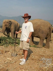 Elephant Nature Park - Tom work