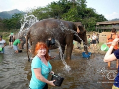 Elephant Nature Park - Sheila elephant bath