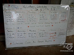 Elephant Nature Park - volunteer schedule