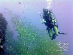 Dive guide, Helena
