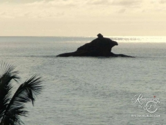 Antigua roadtrip - Hawksbill rock