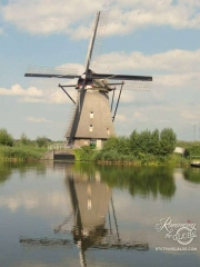 Kinderdijk working windmills