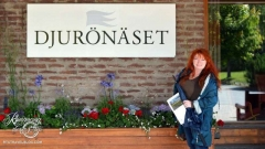 Welcome to Djurönäset Hotel and Conference Center!