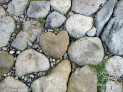 Heart among the stones!