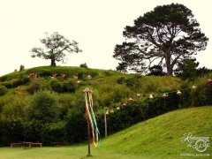 Hobbiton, New Zealand Party area