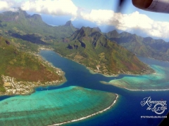 Cook's Bay, Moorea. Took this from the plane. Can you imagine how excited we were!