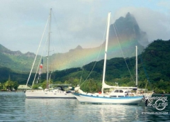 Cook's Bay rainbow. The colors, boats, activity and sky changed constantly in our little bay.