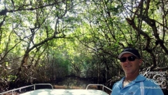 Everglades Mangrove tunnel