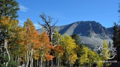 Wheeler Peak colors
