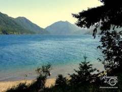 Washington - Lake Crescent 2